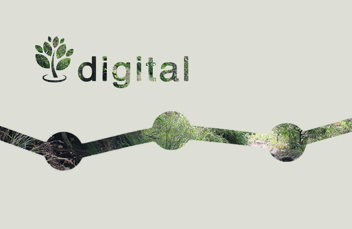 Digitale Konzeption als Beratungsleistung für E-Business.